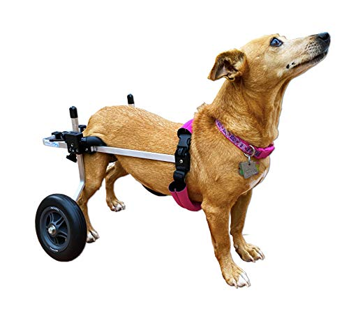 K9 Carts Dog Wheelchair (Small) - Made in The USA