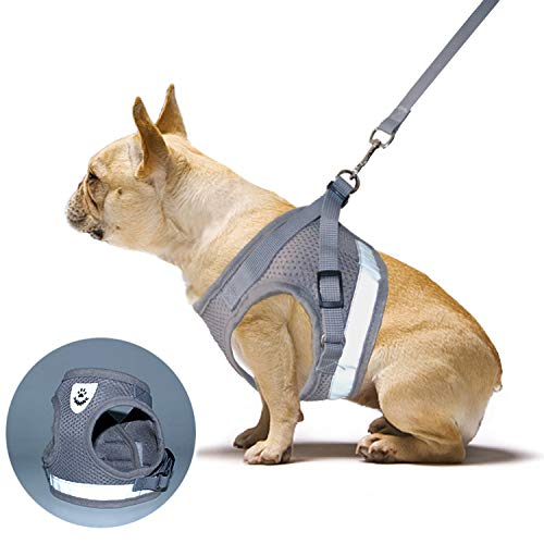 RYPET Soft Mesh Small Dog Harness with...