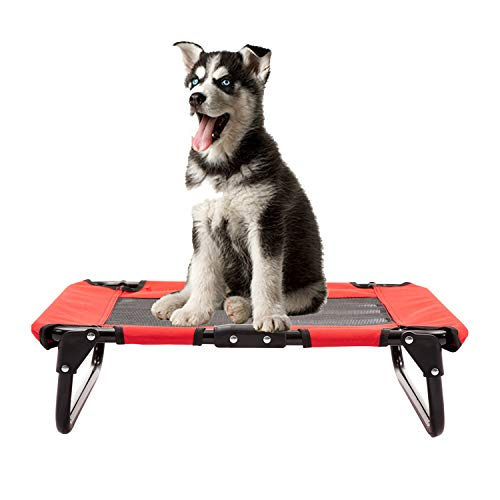 walnest Elevated Pet Bed Dog Cat Play and Rest Raised Cot Lifted Hammock Trampoline Platform for...