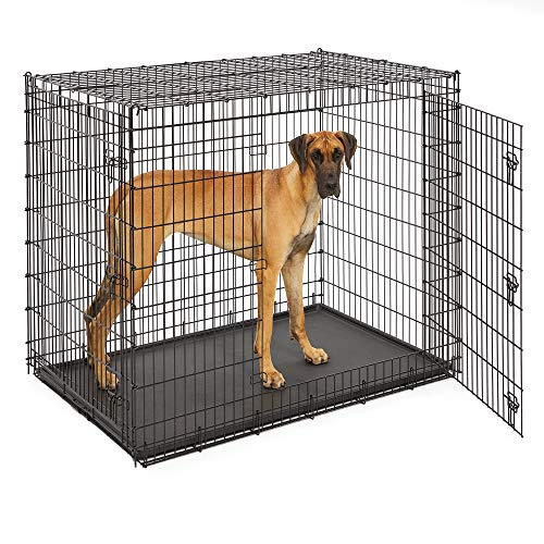 Midwest SL54DD 'Ginormus' Double Door Dog Crate for XXL for the Largest Dogs Breeds, Great Dane,...