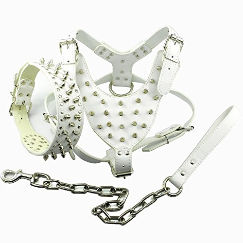 Didog White Leather Spiked Studded...