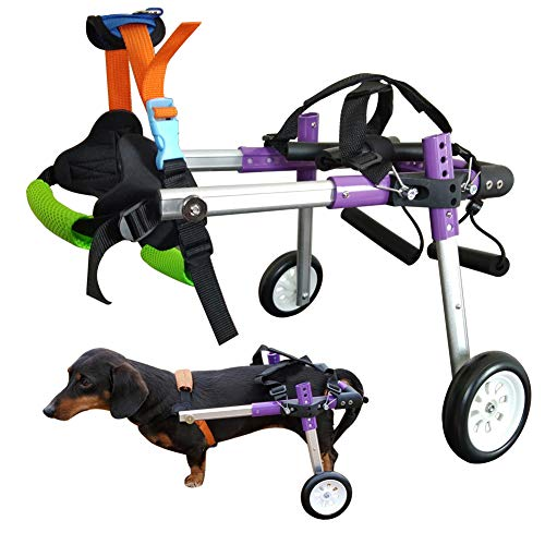 HiHydro 6 Types Cart Pet Wheelchair for...