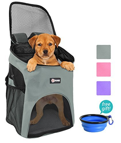 Pawsse Pet Carrier Backpack for Small Cats Dogs Rabbit, Breathable Mesh Pup Pack Outdoor Travel...