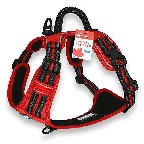 CUDDLY PET, Dog Harness No Pull, Walking Pet Harness with 2 Metal...