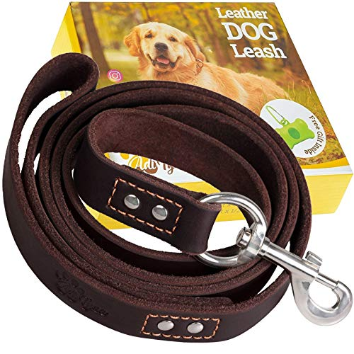 ADITYNA Leather Dog Leash 6 Foot x 3/4 inch - Soft and Strong Leather...
