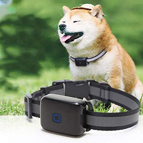 Dog GPS Tracker, Anti Lost Pets Collar – Lightweight and Waterproof Dog Tracking Device and pet...