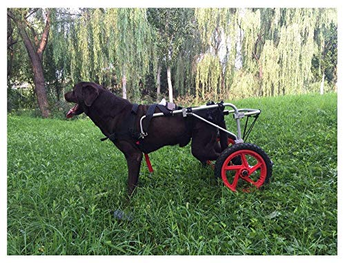 Adjustable Pet Wheelchair - Small and...