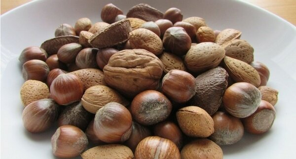 Killer Resources for Can Dogs Eat Nuts? Must Read Before Feeding!