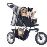 Best Dog Strollers 2020